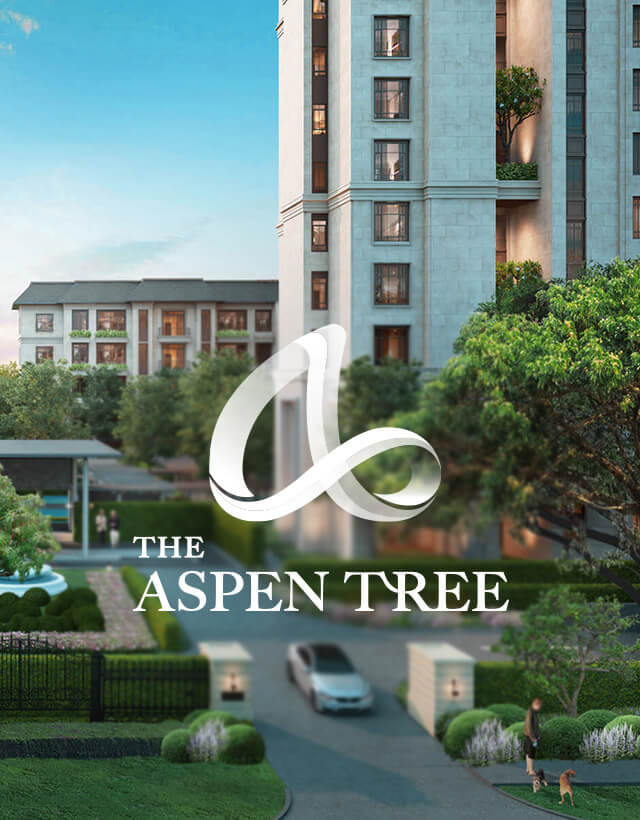 The Aspen Tree hilight mobile