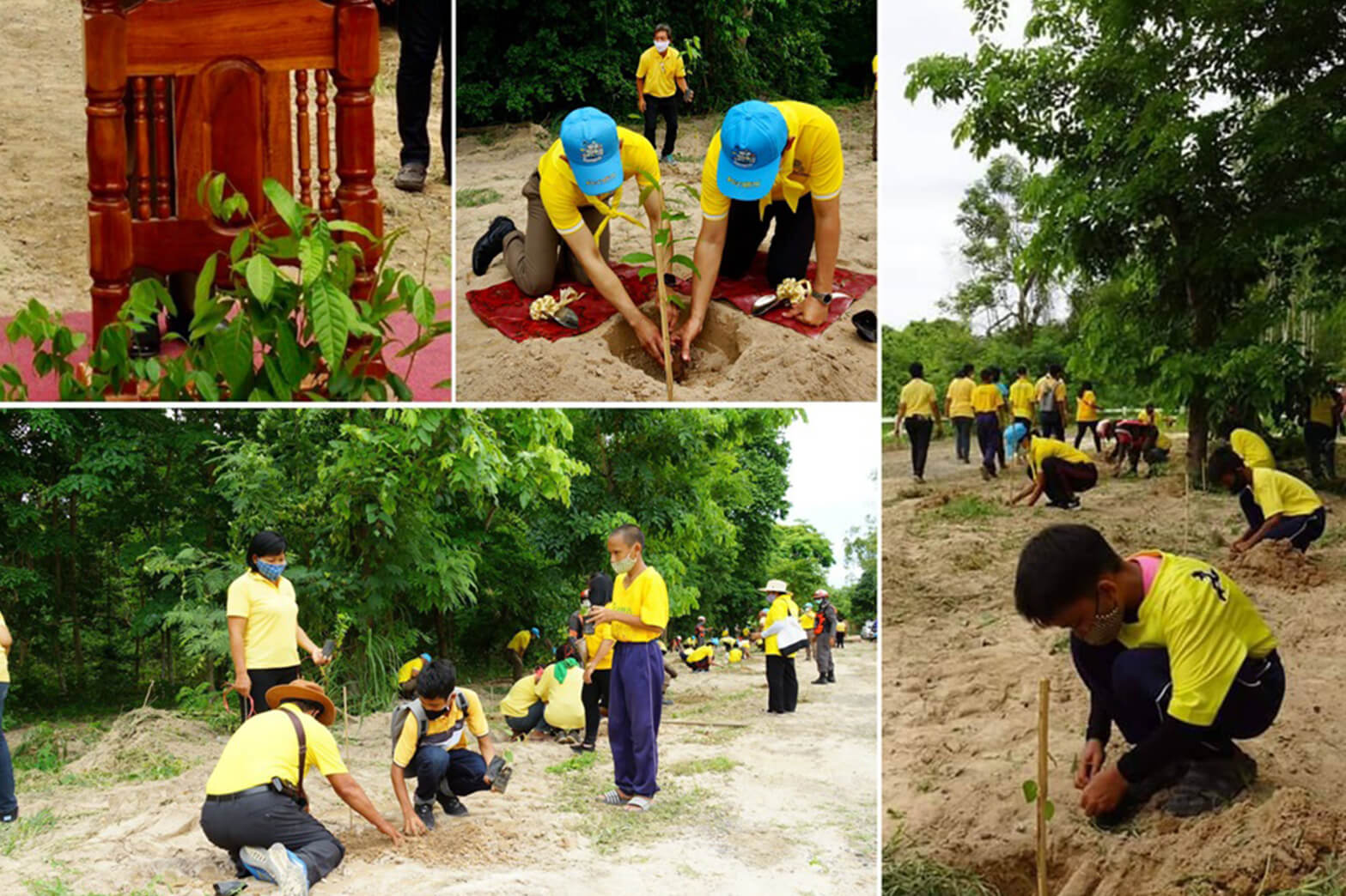 MQDC Holds Forest Ceremony for Her Majesty Queen Suthida