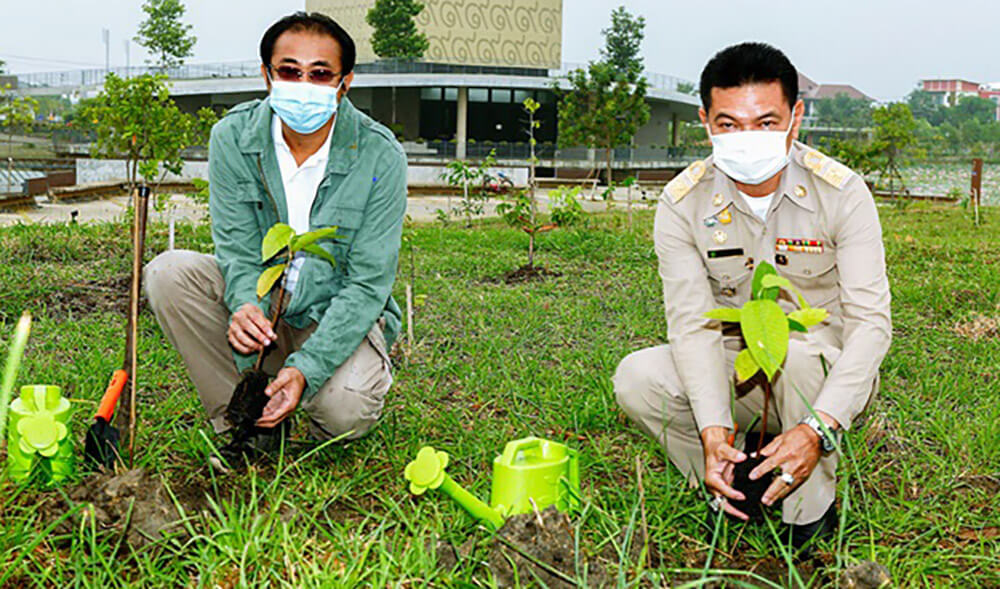 """Forest for Life"" Completes Gift of 300,000 Trees to Bangkok"